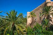 Elche Elx Alicante el Palmeral Palm trees park and Altamira Palace Spain