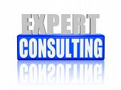 Expert Consulting In 3D Letters And Block