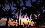 stock photo of siluet  - siluet of palm trees during sunset in Philippines island Boracay.