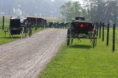 Amish Buggies At Church