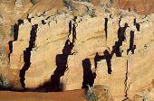 Needles in Cedar Breaks National Monument, Utah, Usa