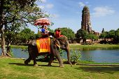 Tourists on an elefant. Ayutthaya