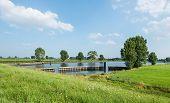 Dutch Landscape In Summertime