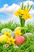 Easter Eggs And Flowers With Blue Sky