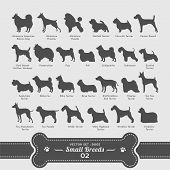 stock photo of pomeranian  - 26 small breed dog silhouette vectors in alphabetical order - JPG