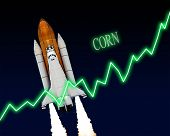 Corn Stock Market