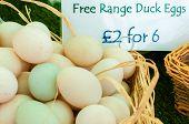 Free Range Duck Eggs In British Market