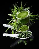 foto of chlorella  - Young barley and chlorella spirulina - JPG