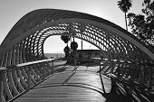 picture of sm  - A black and white view of one of the structures in a Santa Monica park.