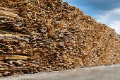 Industrial Timber