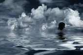 Clouds, tree and reflecting water