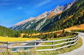 Picturesque mountain valley. Rough stream, dense coniferous forest and easy farmer fence