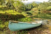 Conoe Boat Sits Next To Tropical Pond