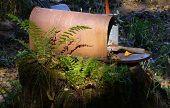 Photo of garden mailbox 1.