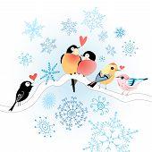 Funny Bird Lovers