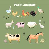 picture of sheep-dog  - Set of farm animals set in a flat vector style with chicken turkeys pig sheep duck goose rabbit goat dairy cow horses - JPG