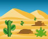 Desert with cactus