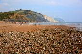 stock photo of shingles  - Charmouth beach Dorset England UK with pebbles and shingle and coas - JPG