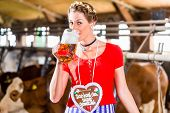 Bavarian woman with Dirndl dress, gingerbread and beer in cowhouse