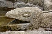 Stone Cobra