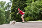 picture of driveway  - Girl having fun skateboarding home driveway with dogs - JPG