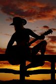 Silhouette Of A Woman With A Guitar Sit Look Back