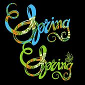 Hand lettering spring inscription pattern