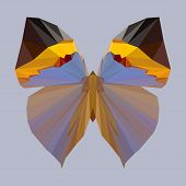 Polygonal Geometric Butterfly Background