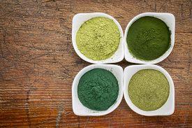 stock photo of chlorella  - four healthy green dietary supplement powders  - JPG