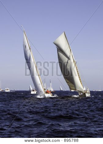 Picture or Photo of Classic sailing yacht thelma competing with safir a 1930 8mji