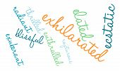 image of rapture  - Exhilarated word cloud on a white background - JPG