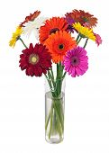 image of centerpiece  - Bouquet from multi colored gerbera flowers in glass vase arrangement centerpiece isolated on white background - JPG