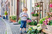 stock photo of flower shop  - Outdoor portrait of a cute little boy - JPG