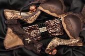 stock photo of silk lingerie  - Sexy lingerie and leopard purse and leopard shoes lying on black satin - JPG