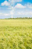 pic of generator  - Summer landscape - JPG