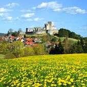 image of rabies  - Spring Landscape with Medieval Stone Castle Ruins Rabi  - JPG
