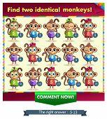 Постер, плакат: Monkey