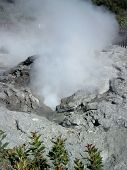 Steaming Hole