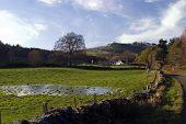 Farm Scene In The Scottish Highlands