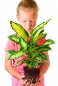 Girl With Houseplant