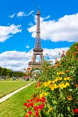 The Eiffel Tower and colorful flowers at the Champ de Mars on a beautiful summer day in Paris poster