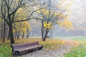 Wooden Bench Near Deserted Park Footpath In Autumn poster