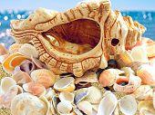 Seashells On Ocean Beach & Blue Sea Sunlight Bokeh, Shell Background. Seashell Background Pattern On poster