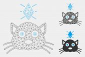 Mesh Ethereum Crypto Kitty Model With Triangle Mosaic Icon. Wire Frame Triangular Mesh Of Ethereum C poster