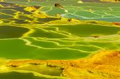 Beautiful Green Color Water In Small Sulfur Lakes Dallol, Ethiopia. Danakil Depression Is The Hottes poster