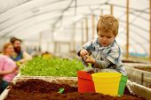Happy Family. Happy Family Workign With Soil In Garden. Happy Family In Greenhouse. Happy Family In  poster