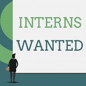 Text Sign Showing Interns Wanted. Conceptual Photo Looking For On The Job Trainee Part Time Working  poster