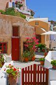 Quiet Backyard In Santorini