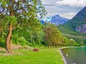 Picnic table over a tree at the beach of Bunzen Lake, Vancouver, Canada.