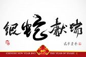 Snake Calligraphy, Chinese New Year 2013 Translation: Auspicious Year of Silver Snake